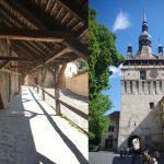ドラキュラのいる世界遺産の町シギショアラとエストニアの首都タリン