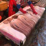 おさかな天国へようこそ!~韓国釜山の魚市場・南浦洞の食堂で生ダコ