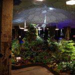 大都市の地下にジャングルのような森林がさかさまに生えている重力のない世界を想像する